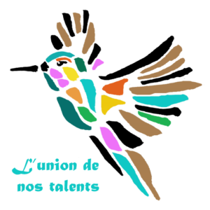 logo de colibrirh conseil